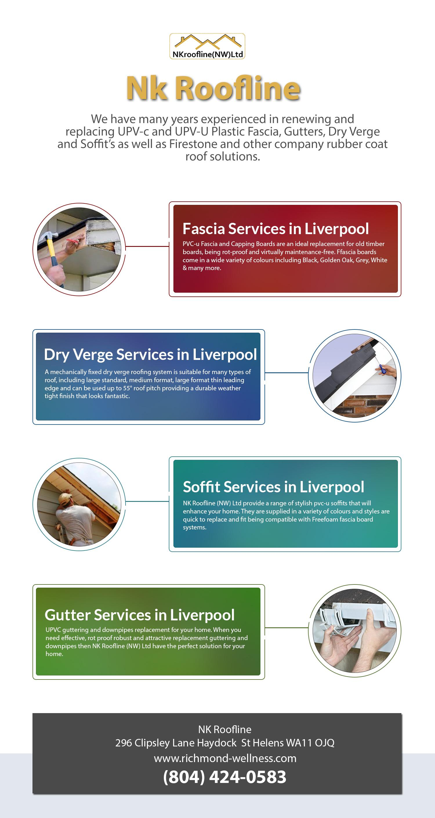 Info Graphical Representation Of Roofline Services